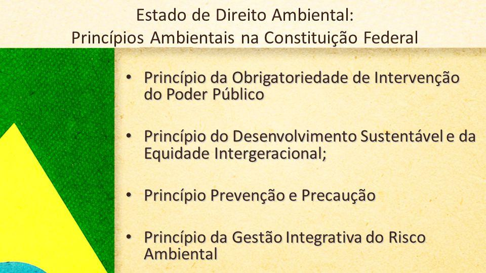 Estado de Direito Ambiental: Princípios Ambientais na Constituição Federal • Princípio da Obrigatoriedade de Intervenção do Poder Público • Princípio do Desenvolvimento Sustentável e da Equidade Intergeracional; • Princípio Prevenção e Precaução • Princípio da Gestão Integrativa do Risco Ambiental