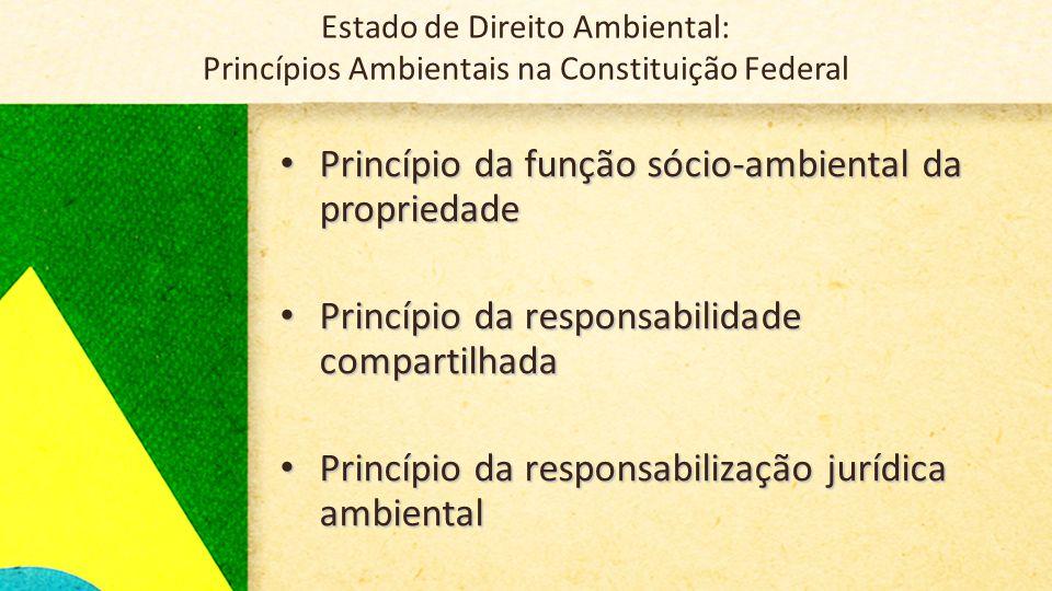 Estado de Direito Ambiental: Princípios Ambientais na Constituição Federal • Princípio da função sócio-ambiental da propriedade • Princípio da responsabilidade compartilhada • Princípio da responsabilização jurídica ambiental