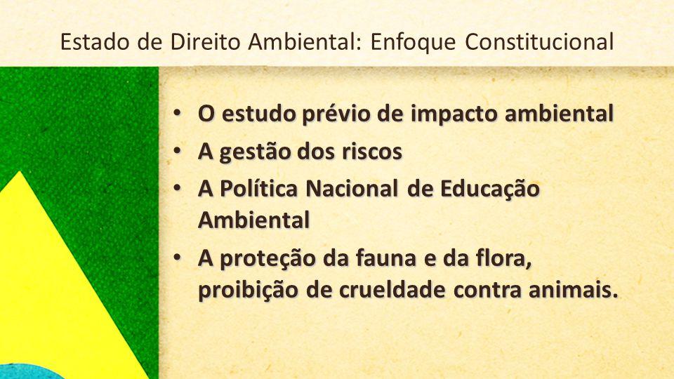 Elementos do Estado de Direito Ambiental Dimensões da proteção ambiental: 1.Garantista/Defensiva 2.Positivo/Prestacional 3.Jurídico Irradiante