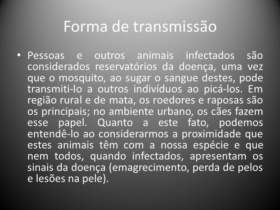 Forma de transmissão • Pessoas e outros animais infectados são considerados reservatórios da doença, uma vez que o mosquito, ao sugar o sangue destes,