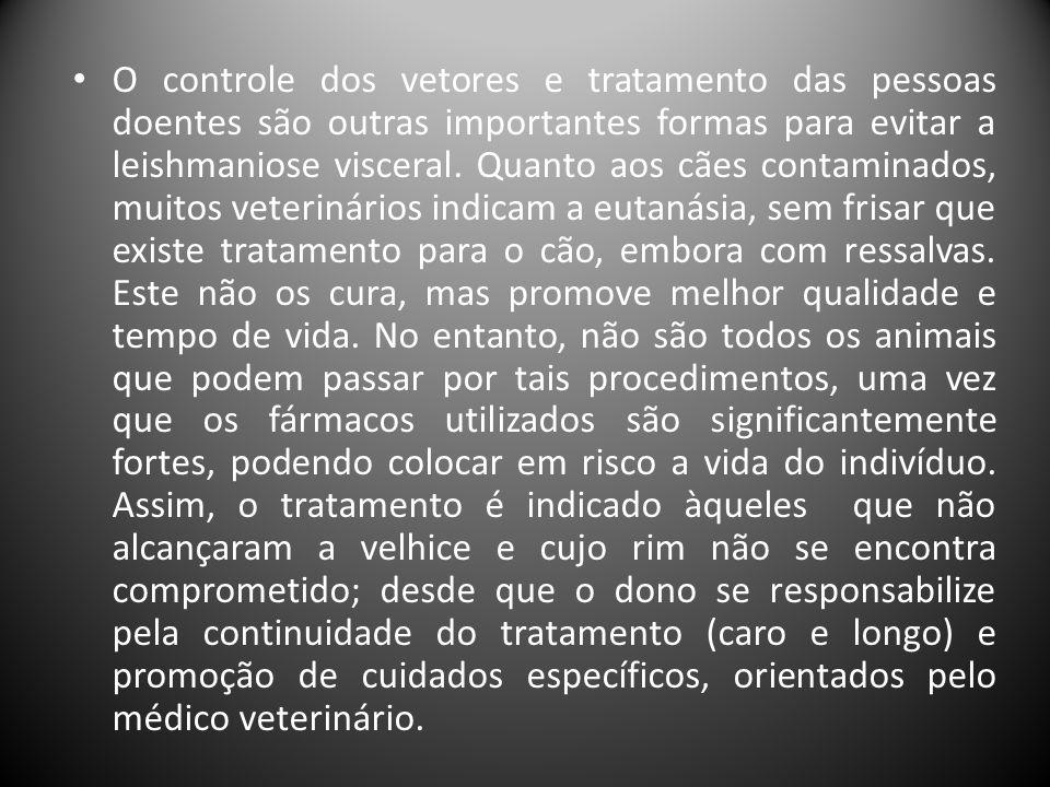 • O controle dos vetores e tratamento das pessoas doentes são outras importantes formas para evitar a leishmaniose visceral. Quanto aos cães contamina