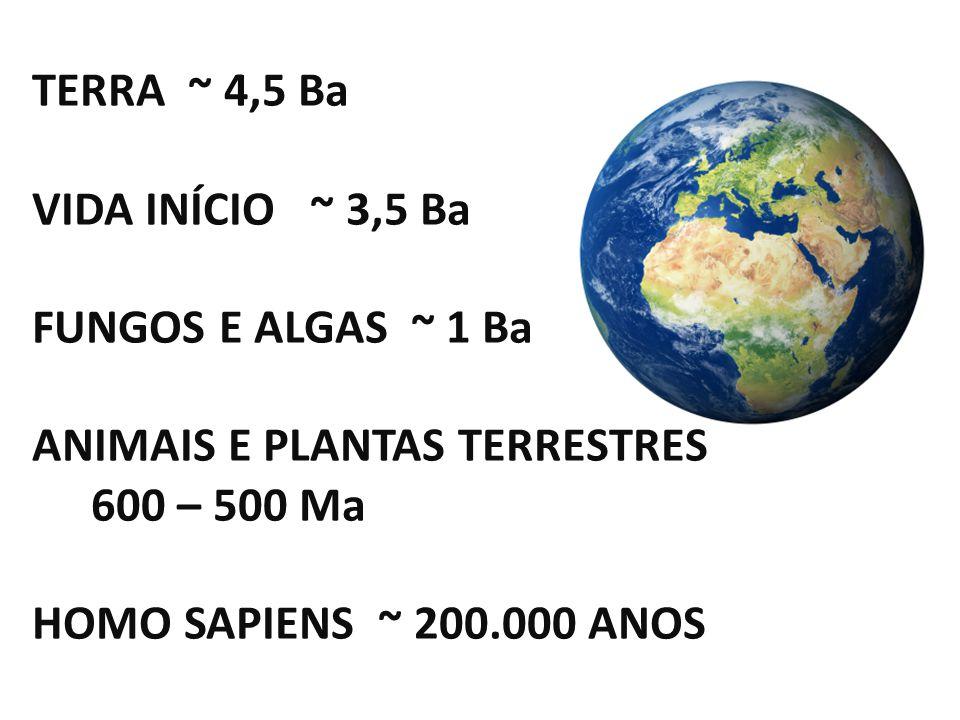 TERRA ~ 4,5 Ba VIDA INÍCIO ~ 3,5 Ba FUNGOS E ALGAS ~ 1 Ba ANIMAIS E PLANTAS TERRESTRES 600 – 500 Ma HOMO SAPIENS ~ 200.000 ANOS