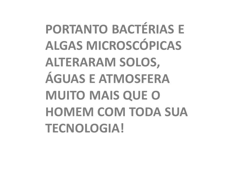 PORTANTO BACTÉRIAS E ALGAS MICROSCÓPICAS ALTERARAM SOLOS, ÁGUAS E ATMOSFERA MUITO MAIS QUE O HOMEM COM TODA SUA TECNOLOGIA!