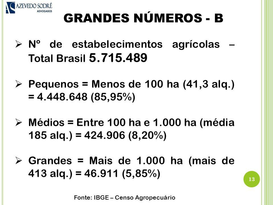 GRANDES NÚMEROS - B 13  Nº de estabelecimentos agrícolas – Total Brasil 5.715.489  Pequenos = Menos de 100 ha (41,3 alq.) = 4.448.648 (85,95%)  Médios = Entre 100 ha e 1.000 ha (média 185 alq.) = 424.906 (8,20%)  Grandes = Mais de 1.000 ha (mais de 413 alq.) = 46.911 (5,85%) Fonte: IBGE – Censo Agropecuário