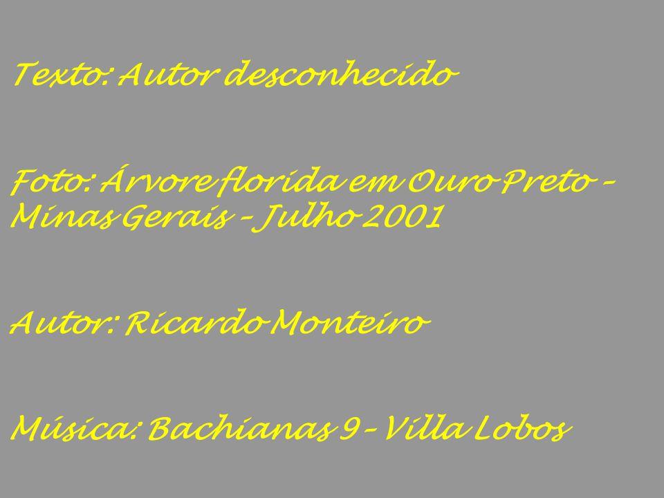 Texto: Autor desconhecido Foto: Árvore florida em Ouro Preto – Minas Gerais – Julho 2001 Autor: Ricardo Monteiro Música: Bachianas 9– Villa Lobos