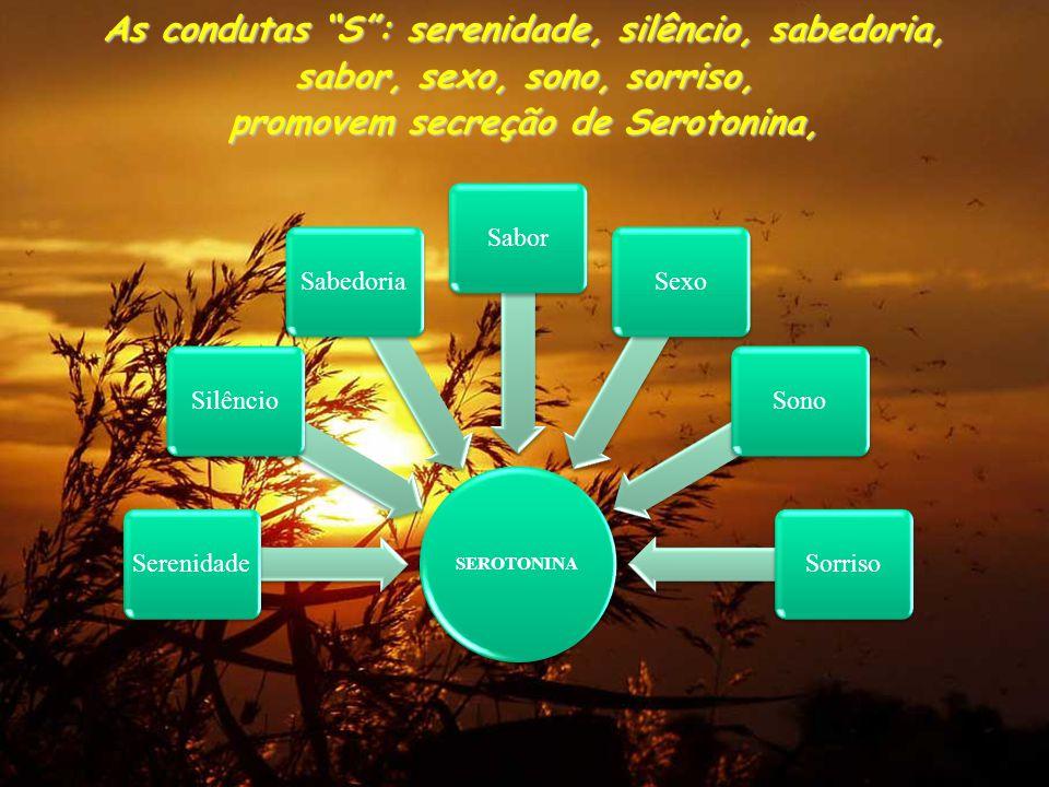 As condutas S : serenidade, silêncio, sabedoria, sabor, sexo, sono, sorriso, promovem secreção de Serotonina, SEROTONINA SerenidadeSilêncioSabedoriaSaborSexoSonoSorriso