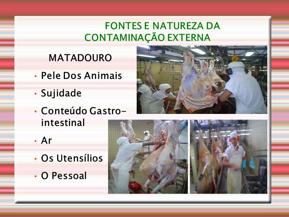 FONTES E NATUREZA DA CONTAMINAÇÃO EXTERNA MATADOURO •Pele Dos Animais •Sujidade •Conteúdo Gastro- intestinal •Ar •Os Utensílios •O Pessoal