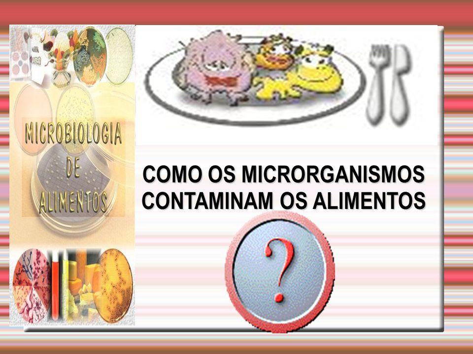  Não manipular alimentos se estiver doente ou com ferimentos nas mãos ou unha;