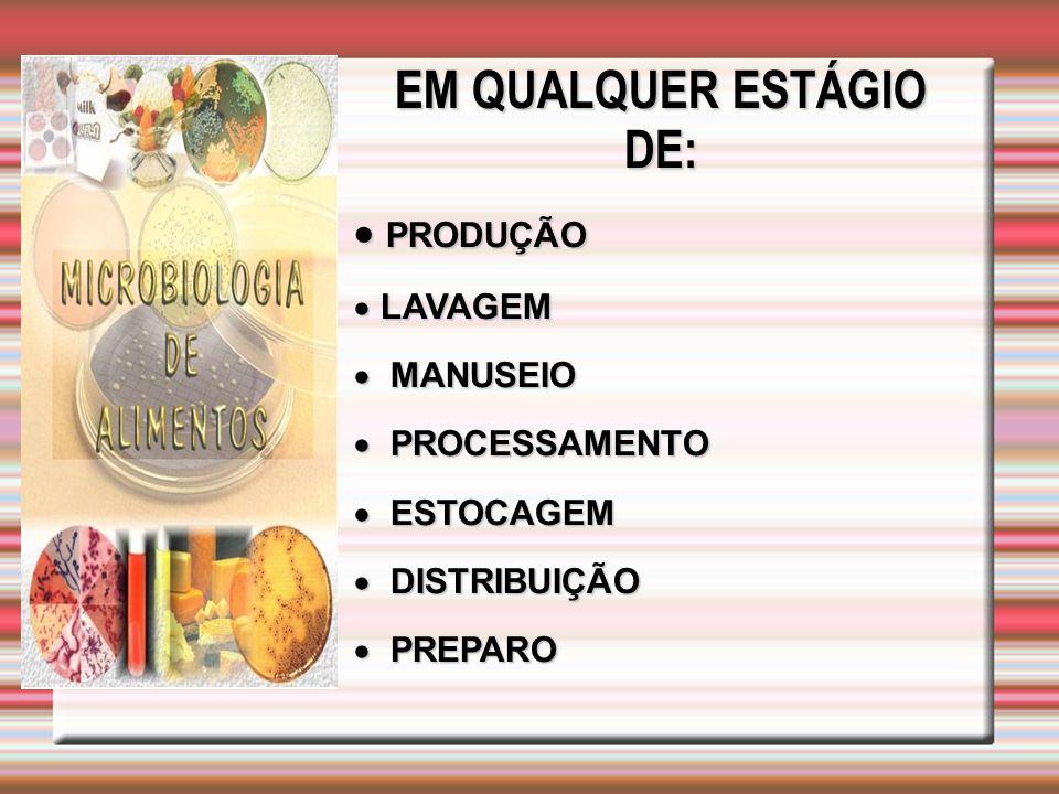 EM QUALQUER ESTÁGIO DE:  PRODUÇÃO  LAVAGEM  MANUSEIO  PROCESSAMENTO  ESTOCAGEM  DISTRIBUIÇÃO  PREPARO