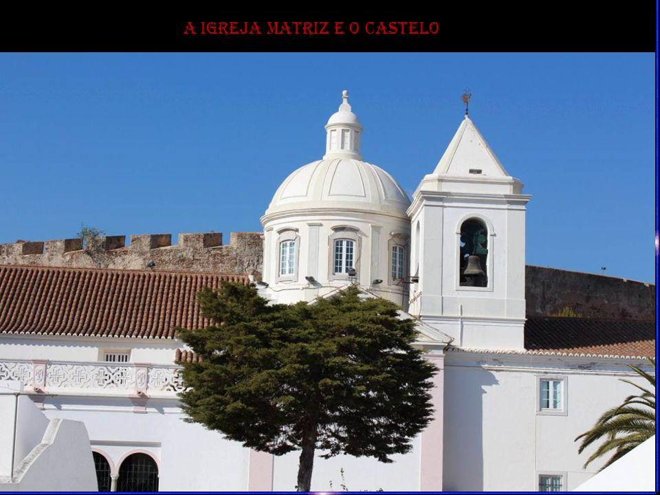 A Cerca Seiscentista vista do Forte de São Sebastião
