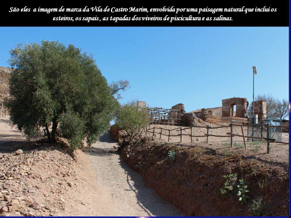 São eles a imagem de marca da Vila de Castro Marim, envolvida por uma paisagem natural que inclui os esteiros, os sapais, as tapadas dos viveiros de piscicultura e as salinas.