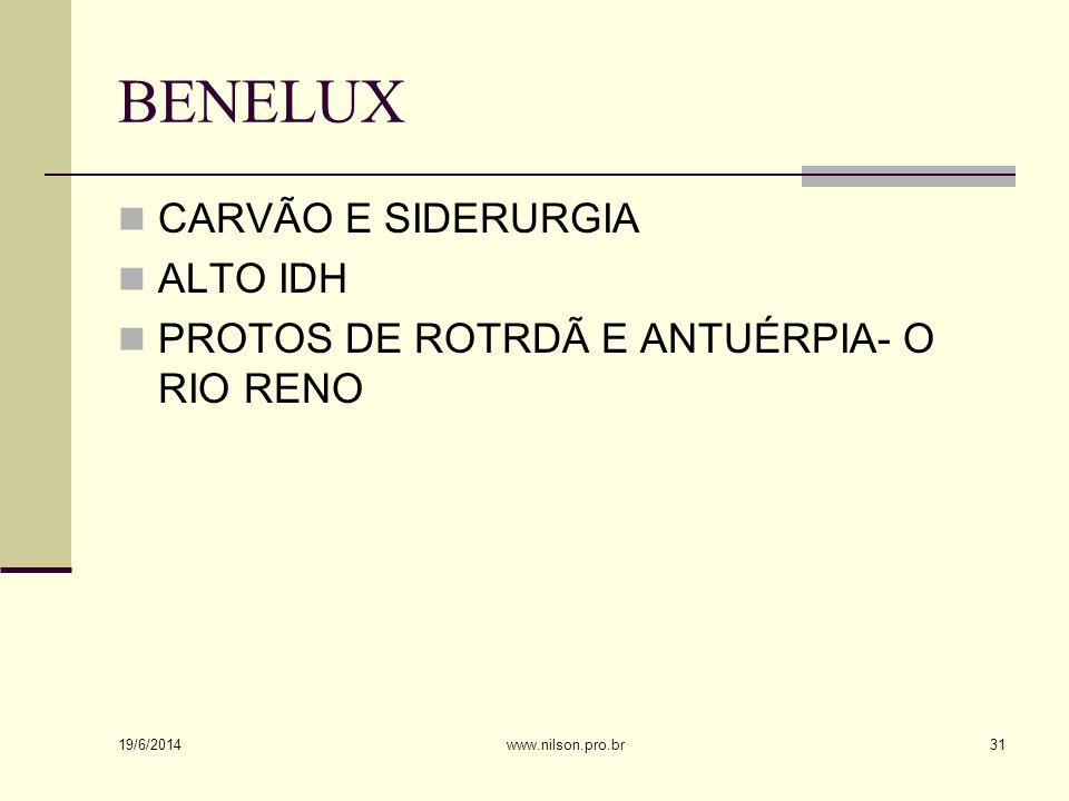 BENELUX  CARVÃO E SIDERURGIA  ALTO IDH  PROTOS DE ROTRDÃ E ANTUÉRPIA- O RIO RENO 19/6/2014 31www.nilson.pro.br