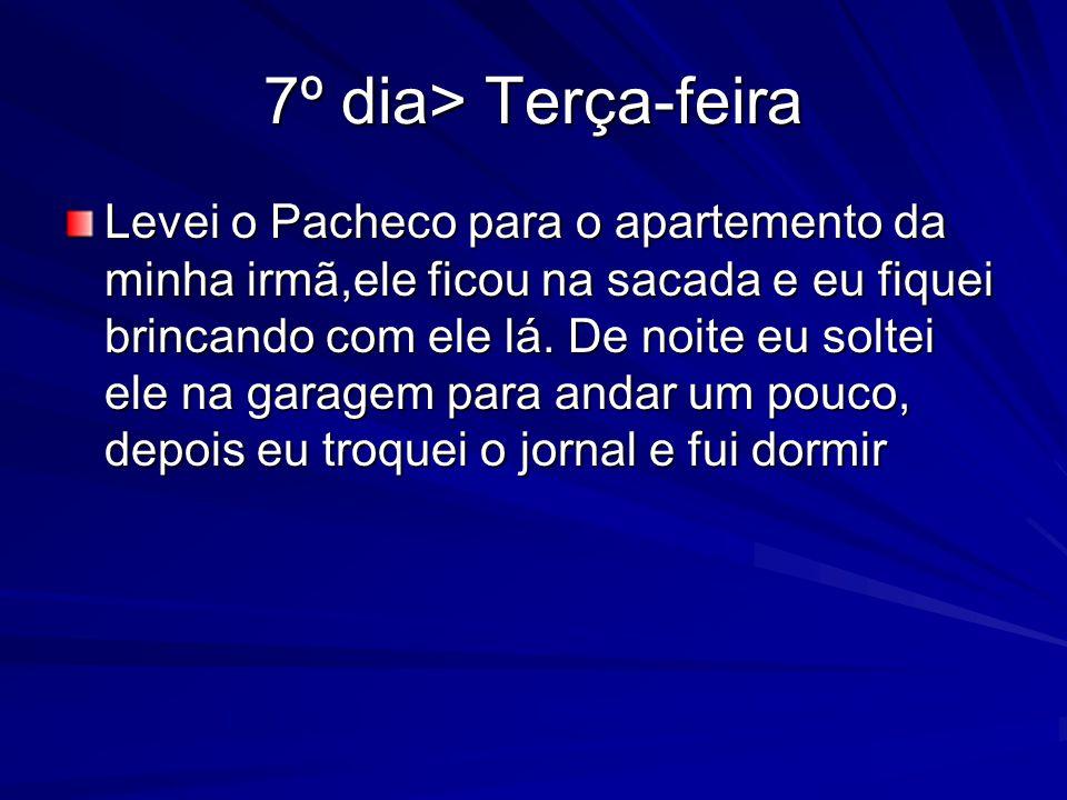 7º dia> Terça-feira Levei o Pacheco para o apartemento da minha irmã,ele ficou na sacada e eu fiquei brincando com ele lá.