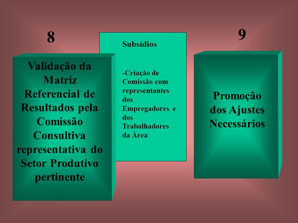 Subsídios -Criação de Comissão com representantes dos Empregadores e dos Trabalhadores da Área Validação da Matriz Referencial de Resultados pela Comissão Consultiva representativa do Setor Produtivo pertinente Promoção dos Ajustes Necessários 8 9