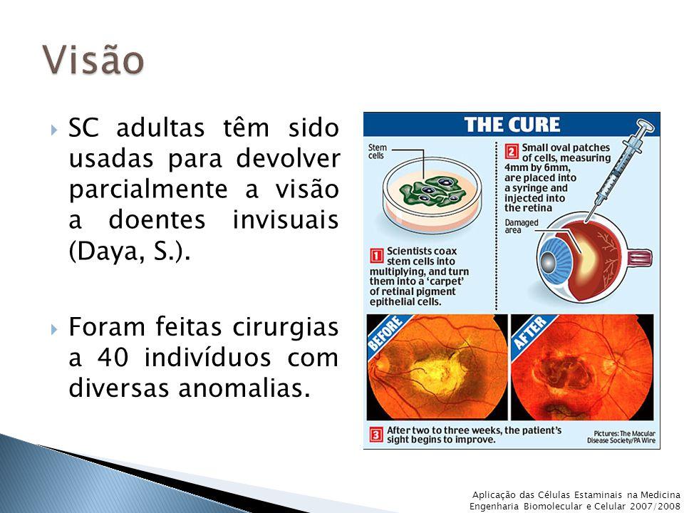  SC adultas têm sido usadas para devolver parcialmente a visão a doentes invisuais (Daya, S.).