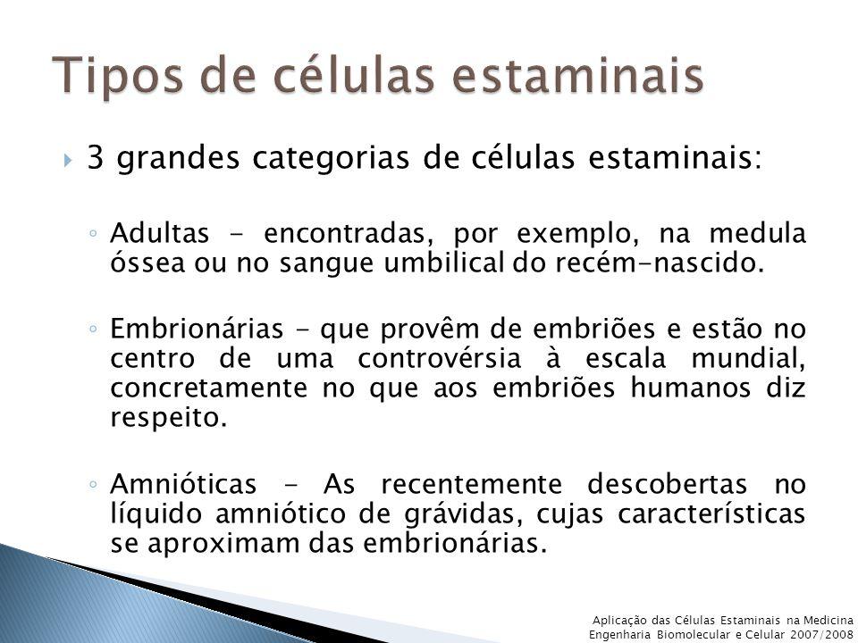  3 grandes categorias de células estaminais: ◦ Adultas - encontradas, por exemplo, na medula óssea ou no sangue umbilical do recém-nascido. ◦ Embrion