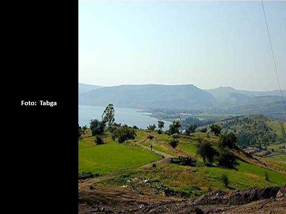 Foto: Tabga Monte do Sermão da Montanha. (Mateus Cap.5 a 7) Descendo do Monte,curou o leproso. (Mat.8:1-3)
