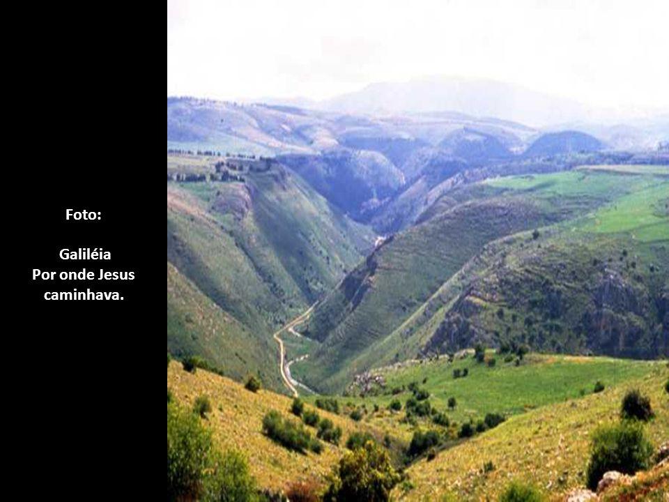 Foto: Galiléia Por onde Jesus caminhava.