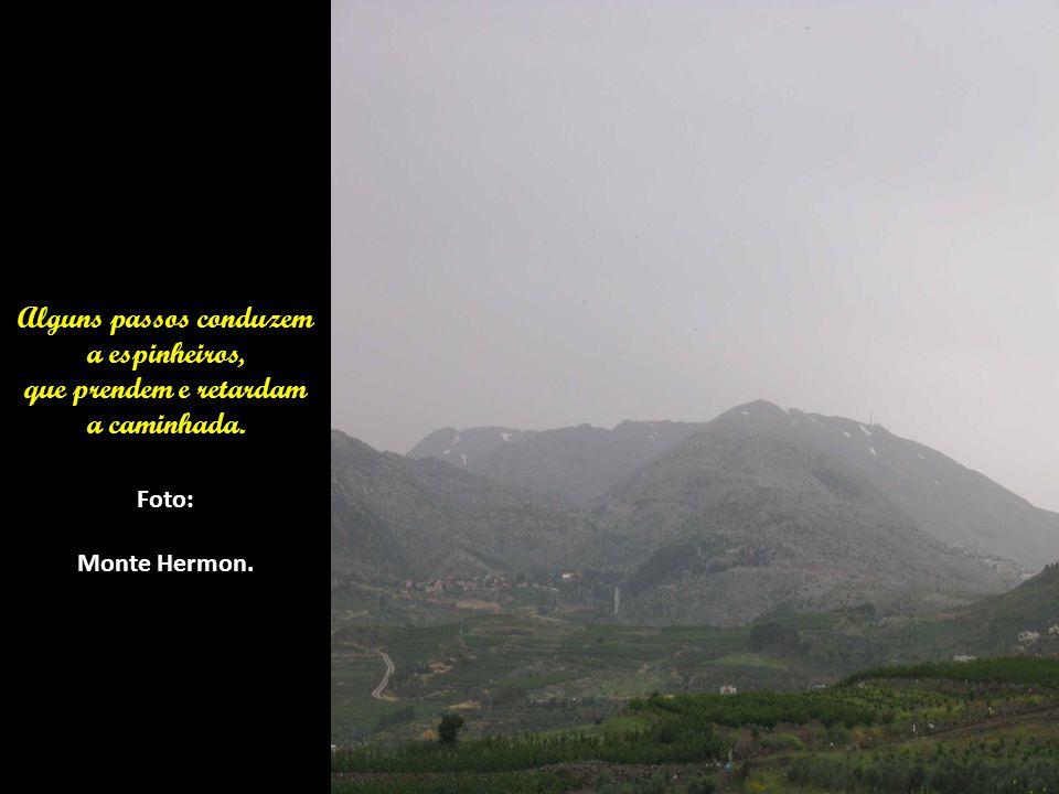 Foto: Tabga Monte do Sermão da Montanha.(Mateus Cap.5 a 7) Descendo do Monte,curou o leproso.