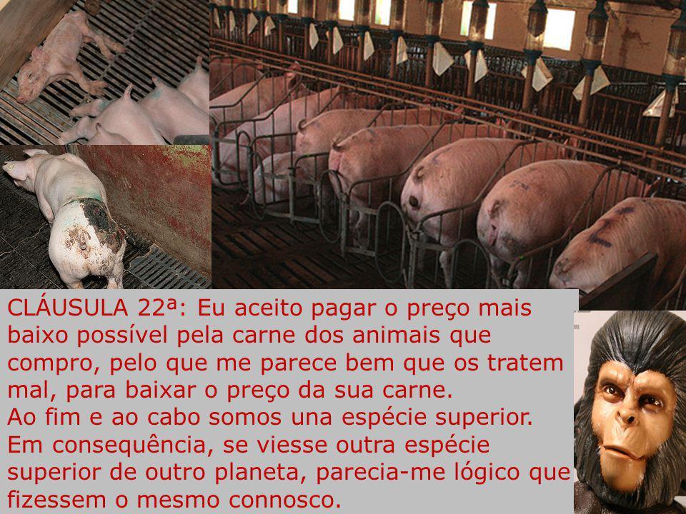 CLÁUSULA 21ª: Eu aceito que os transgénicos se expandam por todo o planeta, e que as multinacionais agroalimentares que alimentam seres vivos, acumule