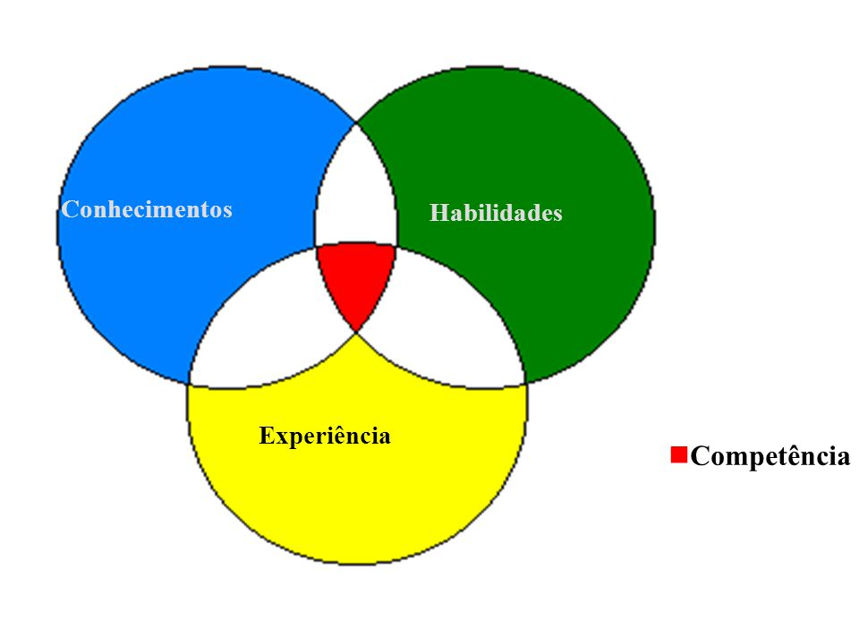 Conhecimentos Habilidades Experiência  Competência