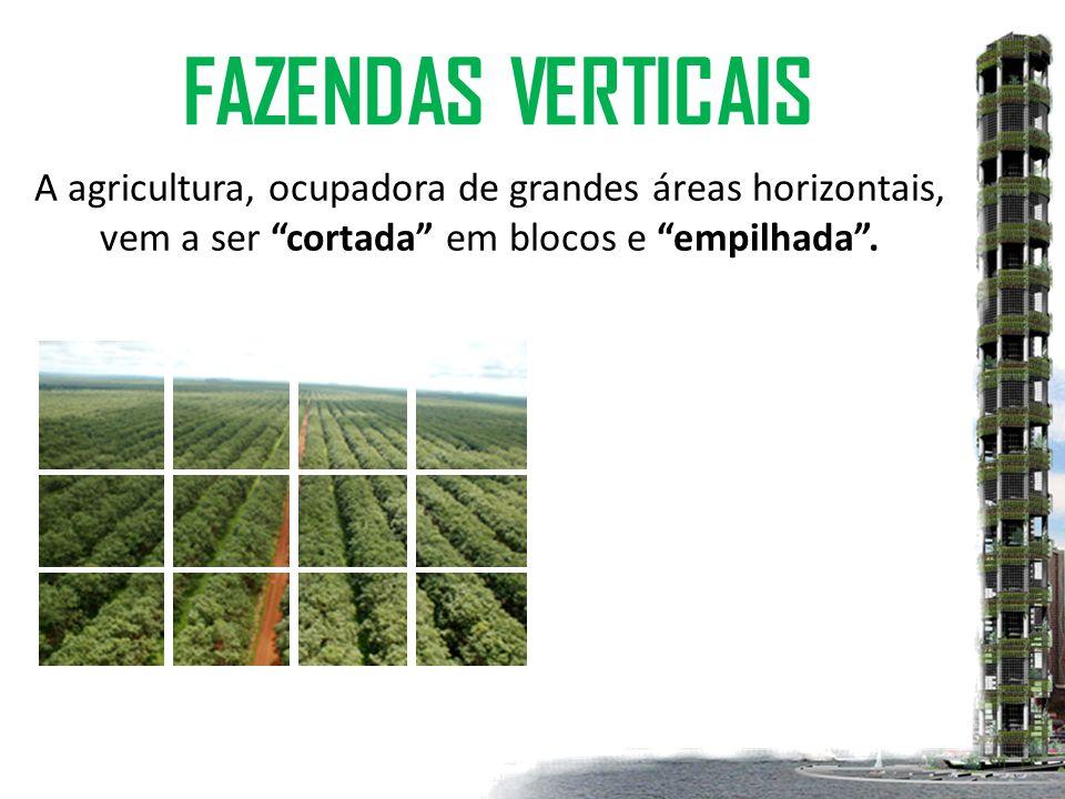 A agricultura, ocupadora de grandes áreas horizontais, vem a ser cortada em blocos e empilhada .