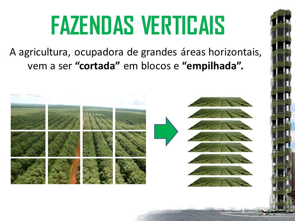 FAZENDAS VERTICAIS A agricultura, ocupadora de grandes áreas horizontais, vem a ser cortada em blocos e empilhada .