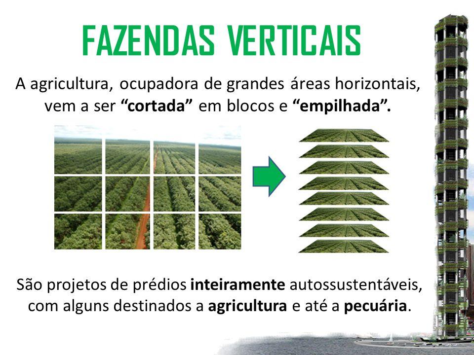 FAZENDAS VERTICAIS São projetos de prédios inteiramente autossustentáveis, com alguns destinados a agricultura e até a pecuária.