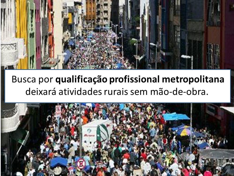 Busca por qualificação profissional metropolitana deixará atividades rurais sem mão-de-obra.