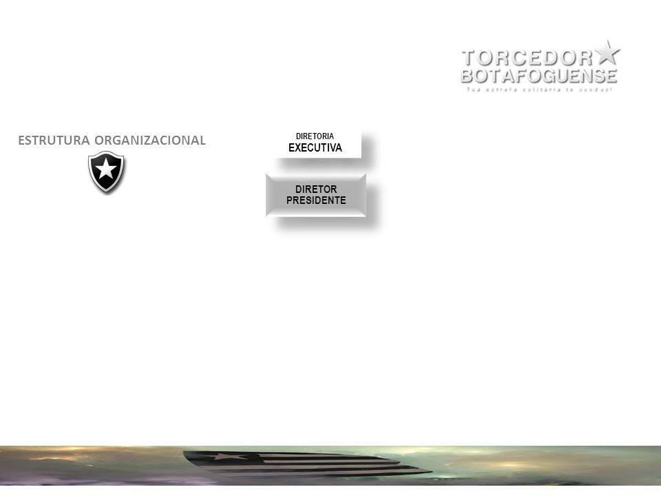 30 DIRETOR PRESIDENTE DIRETOR PRESIDENTE DIRETORIA EXECUTIVA DIRETORIA EXECUTIVA ESTRUTURA ORGANIZACIONAL