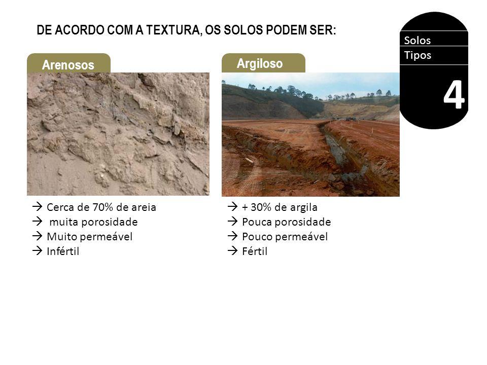 Solos Tipos 4 DE ACORDO COM A TEXTURA, OS SOLOS PODEM SER: Argiloso Arenosos  Cerca de 70% de areia  muita porosidade  Muito permeável  Infértil 