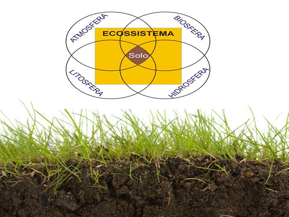  O solo é a camada mais superficial e mais fina da crosta terrestre, e é indispensável para a manutenção da vida na Terra Solos Conceito 1 materiais inorgânicos + materiais orgânicos Solo = Materiais inorgânicos Materiais orgânicos formados a partir da decomposição da matéria orgânica – húmus formados a partir da desintegração de rochas – partículas de rochas