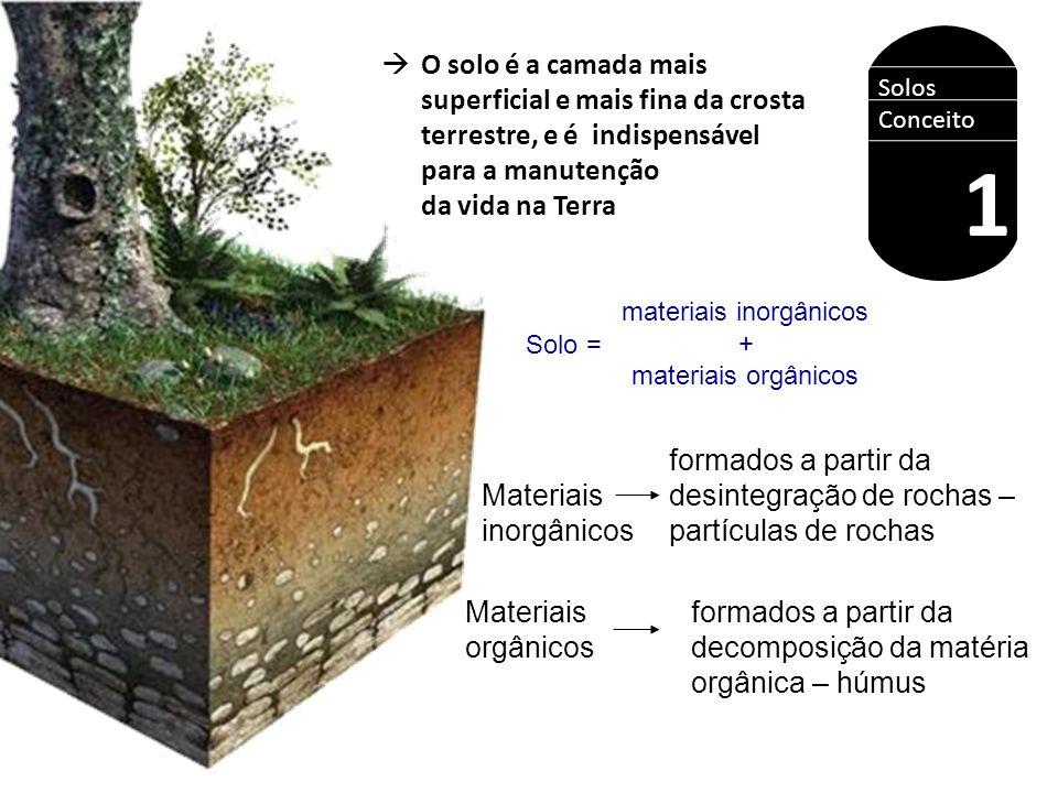  O solo é a camada mais superficial e mais fina da crosta terrestre, e é indispensável para a manutenção da vida na Terra Solos Conceito 1 materiais