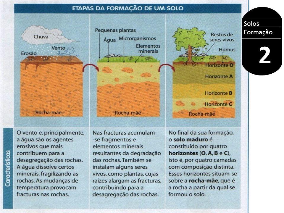 Solos Formação 2 ROCHA MÃE INTEMPERISMO SOLO Físico Biológico Químico Variação de temperatura Ação do gelo Ação dos ventos Líquens Bactérias musgos Água da chuva