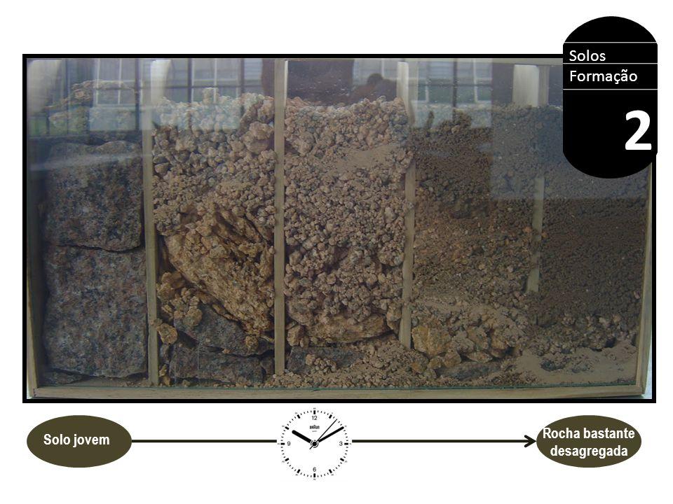HORIZONTES DO SOLOS O A B C R Solos Formação 2 São as camadas paralelas à superfície do solo.