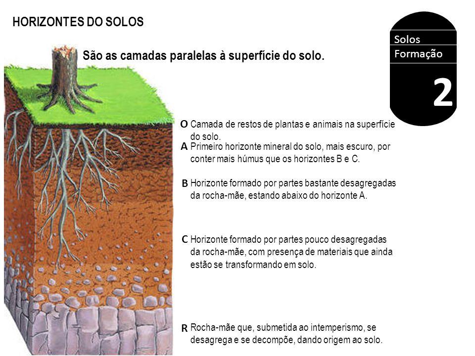 HORIZONTES DO SOLOS O A B C R Solos Formação 2 São as camadas paralelas à superfície do solo. Camada de restos de plantas e animais na superfície do s