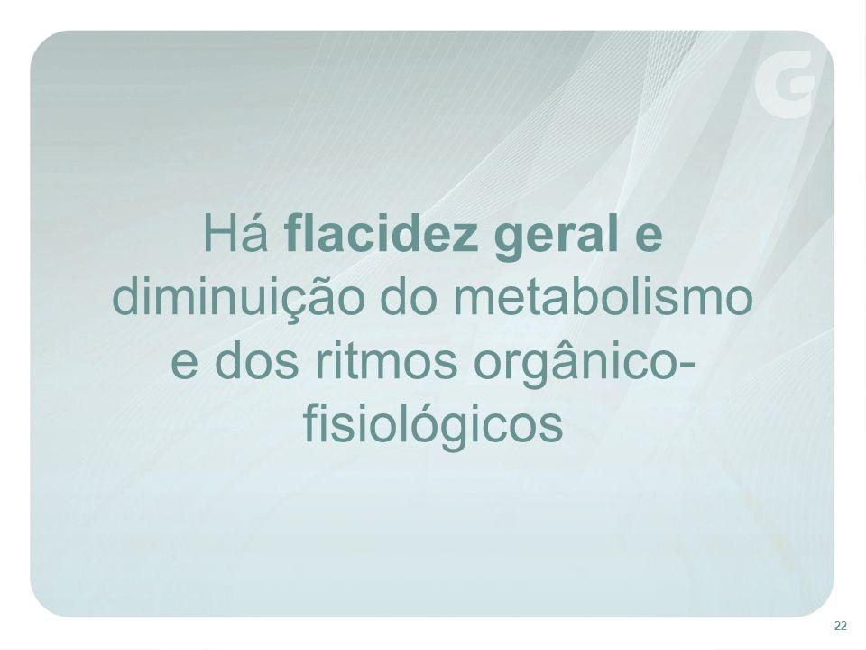 22 Há flacidez geral e diminuição do metabolismo e dos ritmos orgânico- fisiológicos