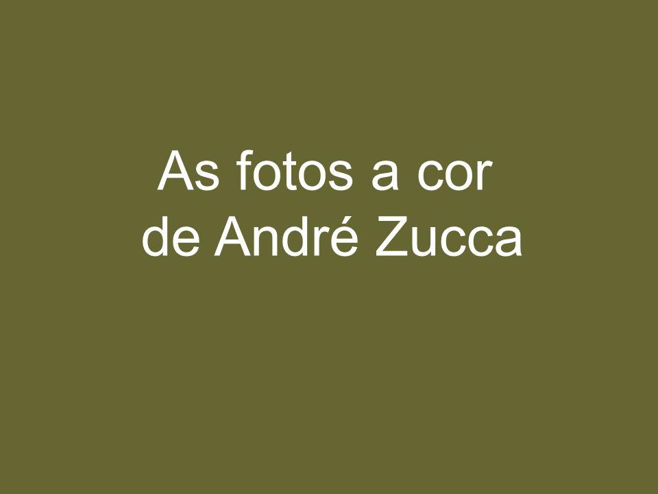 As fotos a cor de André Zucca