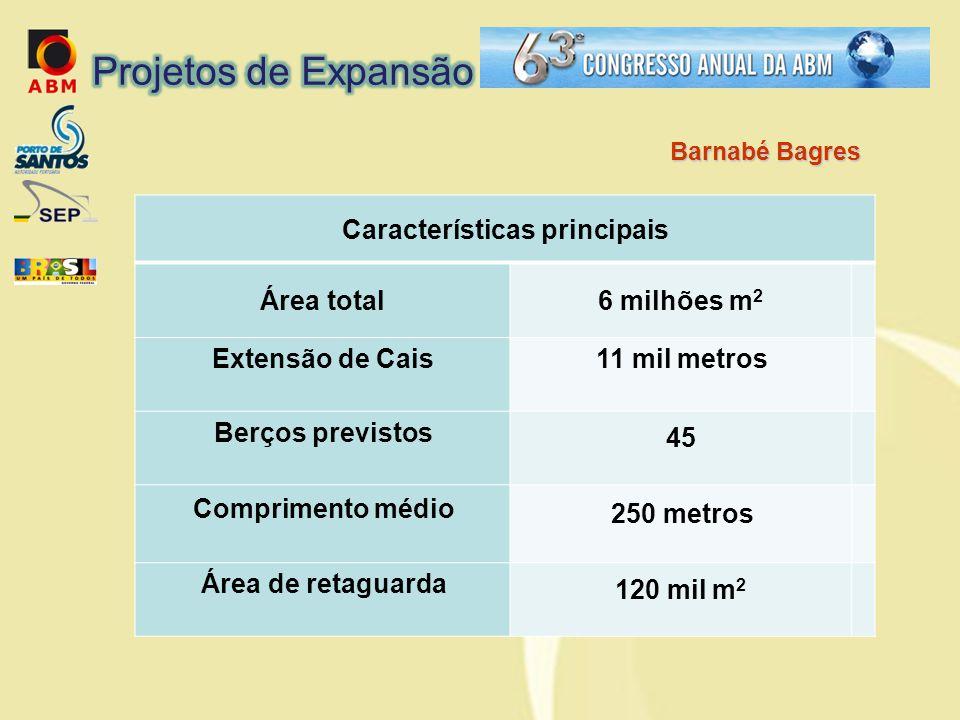 Características principais Área total6 milhões m 2 Extensão de Cais11 mil metros Berços previstos 45 Comprimento médio 250 metros Área de retaguarda 120 mil m 2