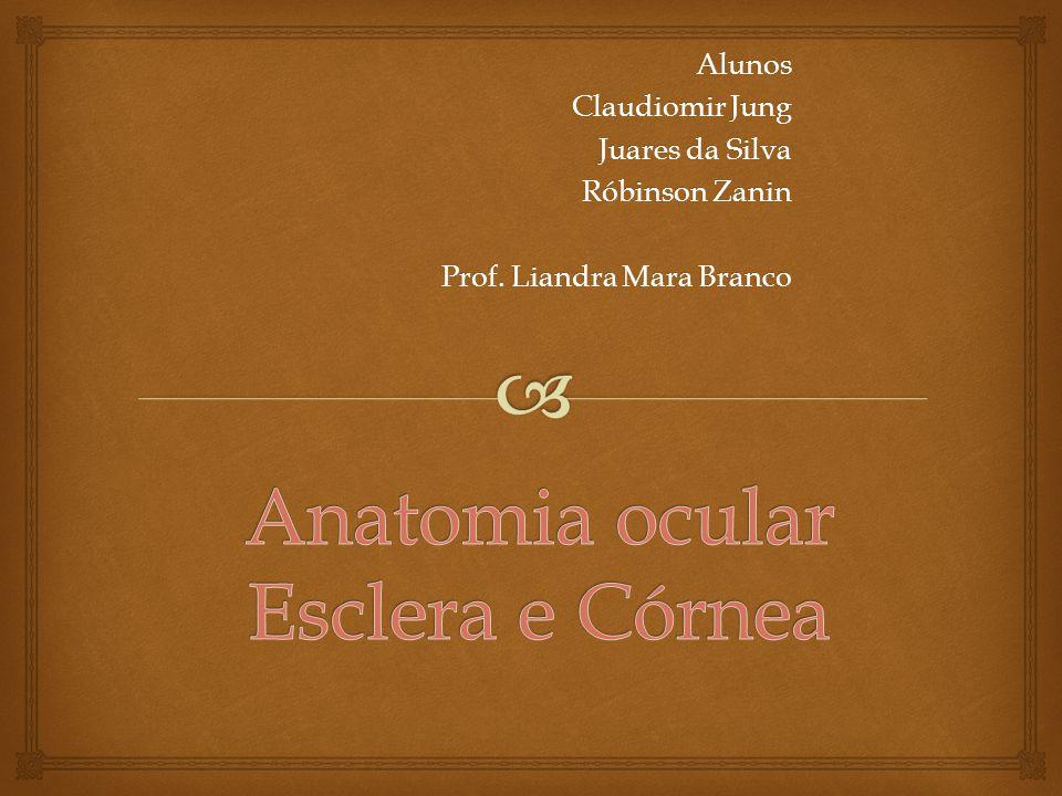 CERATOCONE O ceratocone, ou córnea cônica é uma desordem não inflamatória, na qual existe uma modificação na espessura e formato da córnea, geralmente bilateral (em ambas as córneas) e assimétrico.