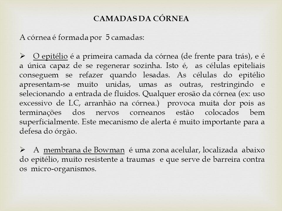 CAMADAS DA CÓRNEA A córnea é formada por 5 camadas:  O epitélio é a primeira camada da córnea (de frente para trás), e é a única capaz de se regenera