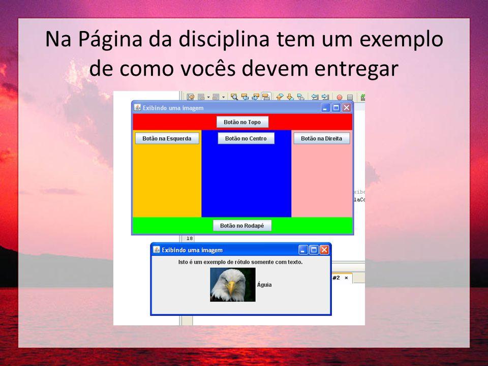 Na Página da disciplina tem um exemplo de como vocês devem entregar