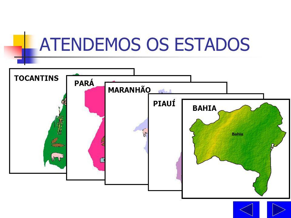EQUIPE SUPRINORTE  Domingos Rodrigues dos Santos Repr. – Oeste da BA/ Sup. de Vendas  Ronaldo Chagas da Silva Repr. – Tocantins e Sul Pará  Robson