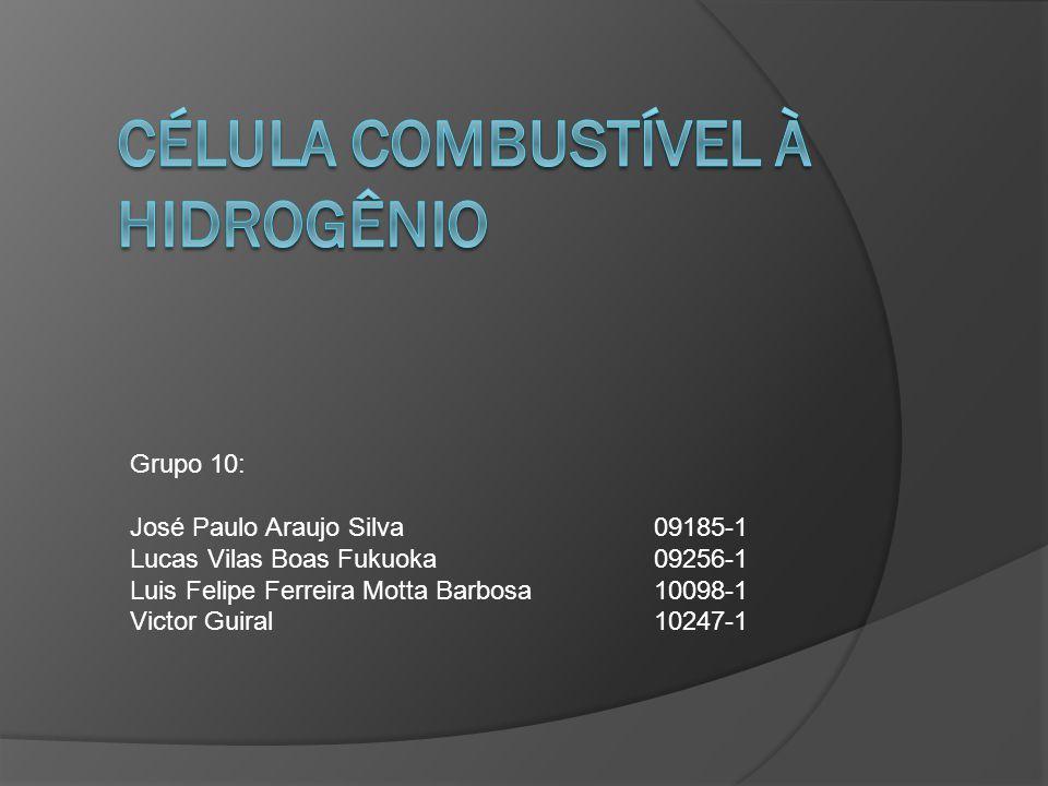 Grupo 10: José Paulo Araujo Silva09185-1 Lucas Vilas Boas Fukuoka09256-1 Luis Felipe Ferreira Motta Barbosa10098-1 Victor Guiral10247-1