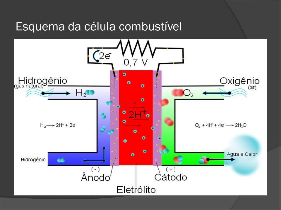  No lado do ânodo, com a aplicação de um catalisador de platina, o hidrogênio é separado em prótons (íons de H) e elétrons  Os íons passam pelo eletrólito e, novamente com a aplicação de um catalisador de platina, combinam-se com o oxigênio e elétrons no lado do cátodo  O produto resultante é água que então é expelida em forma de vapor