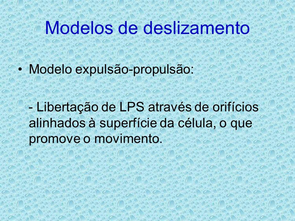 Modelos de deslizamento •Modelo expulsão-propulsão: - Libertação de LPS através de orifícios alinhados à superfície da célula, o que promove o movimento.