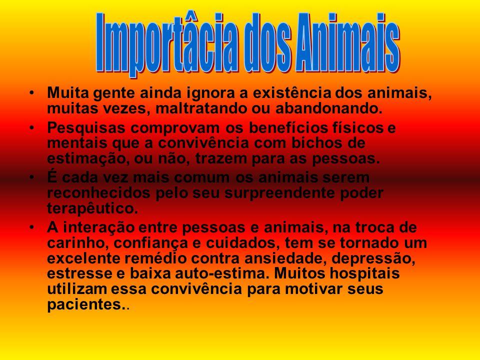 •Muita gente ainda ignora a existência dos animais, muitas vezes, maltratando ou abandonando. •Pesquisas comprovam os benefícios físicos e mentais que
