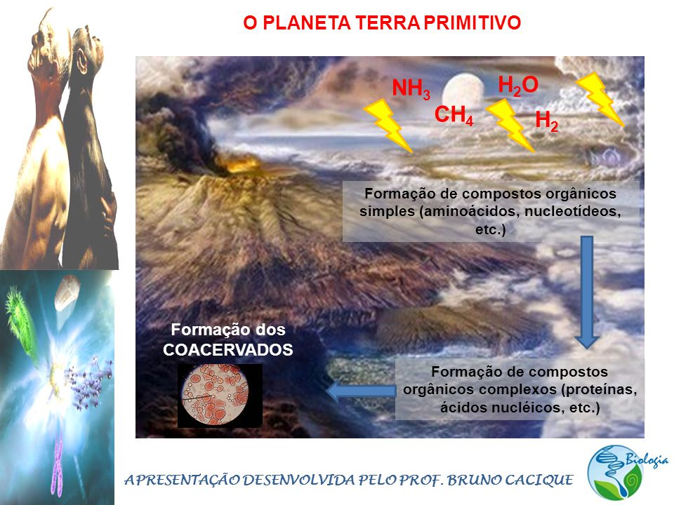 O PLANETA TERRA PRIMITIVO H2OH2O NH 3 H2H2 CH 4 Formação de compostos orgânicos simples (aminoácidos, nucleotídeos, etc.) Formação de compostos orgâni