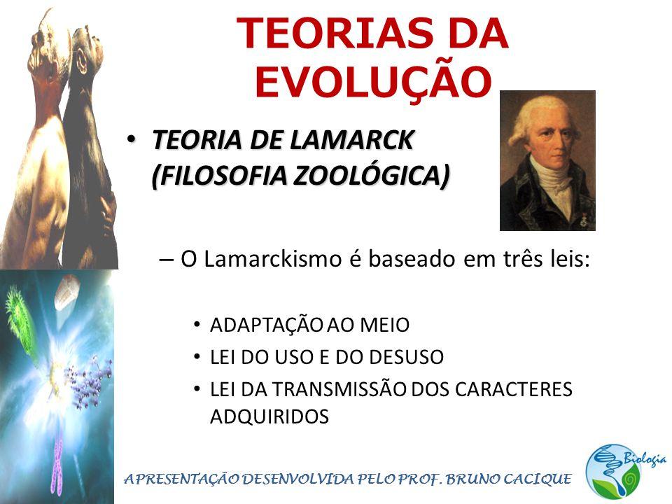TEORIAS DA EVOLUÇÃO • TEORIA DE LAMARCK (FILOSOFIA ZOOLÓGICA) – O Lamarckismo é baseado em três leis: • ADAPTAÇÃO AO MEIO • LEI DO USO E DO DESUSO • LEI DA TRANSMISSÃO DOS CARACTERES ADQUIRIDOS APRESENTAÇÃO DESENVOLVIDA PELO PROF.
