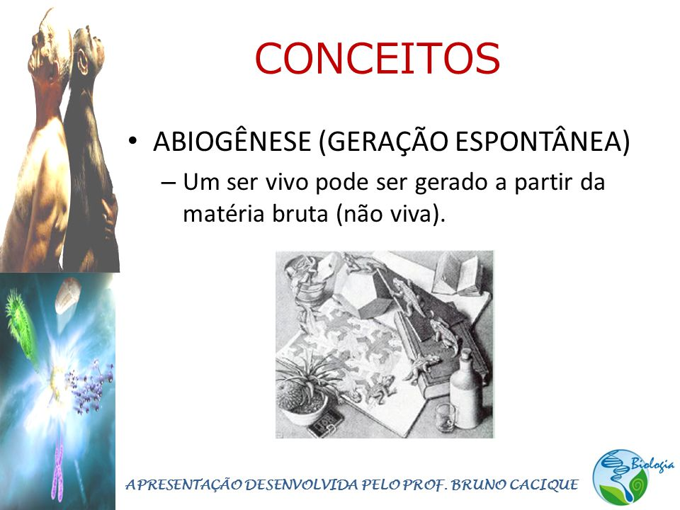 CONCEITOS • ABIOGÊNESE (GERAÇÃO ESPONTÂNEA) – Um ser vivo pode ser gerado a partir da matéria bruta (não viva). APRESENTAÇÃO DESENVOLVIDA PELO PROF. B